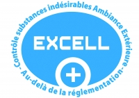 Logo Excell 2015